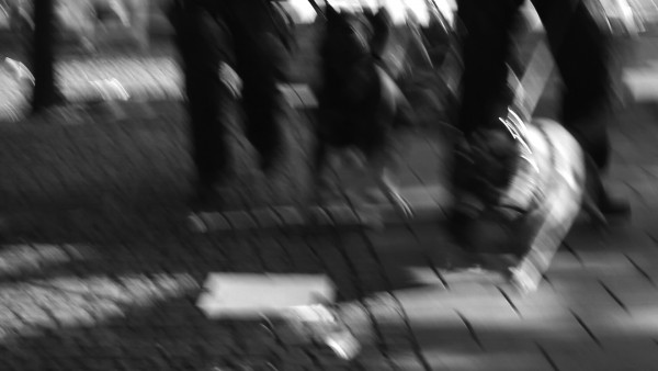Hundar SV 11 Kungsan 2014
